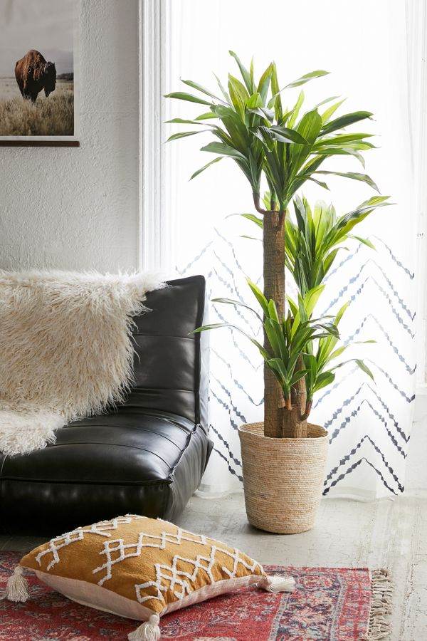 Slide View: 1: Dracena 5 ft Potted Faux Tree