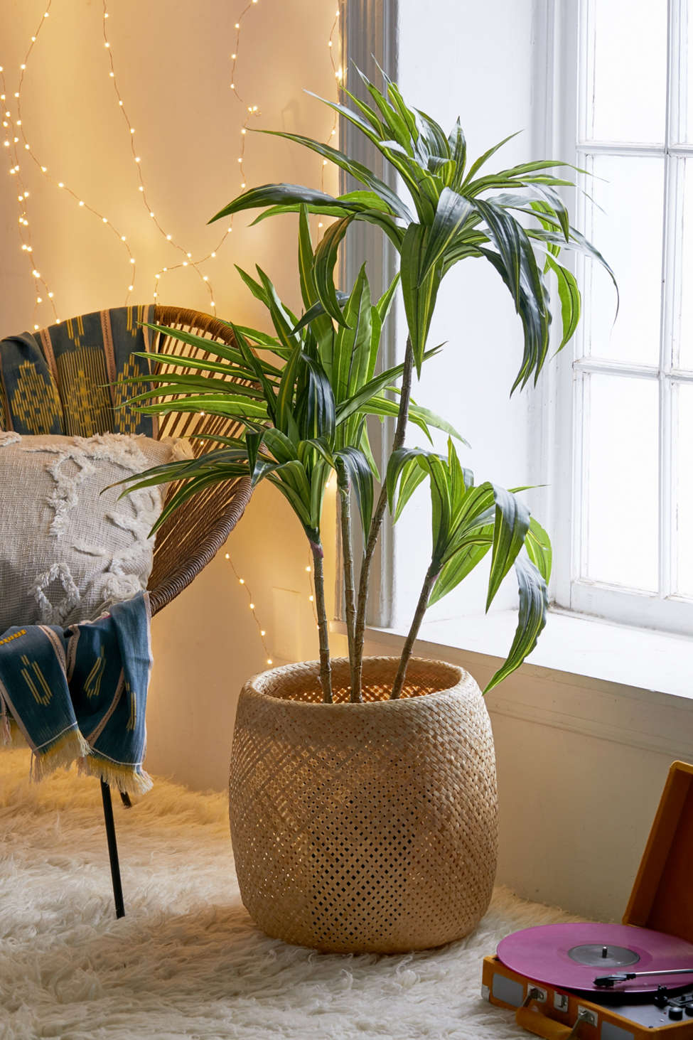 Slide View: 1: Dracena 4 ft Potted Faux Tree