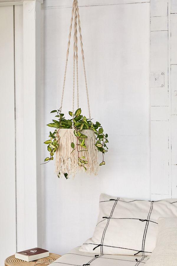 Slide View: 1: Natalie Macramé Hanging Planter