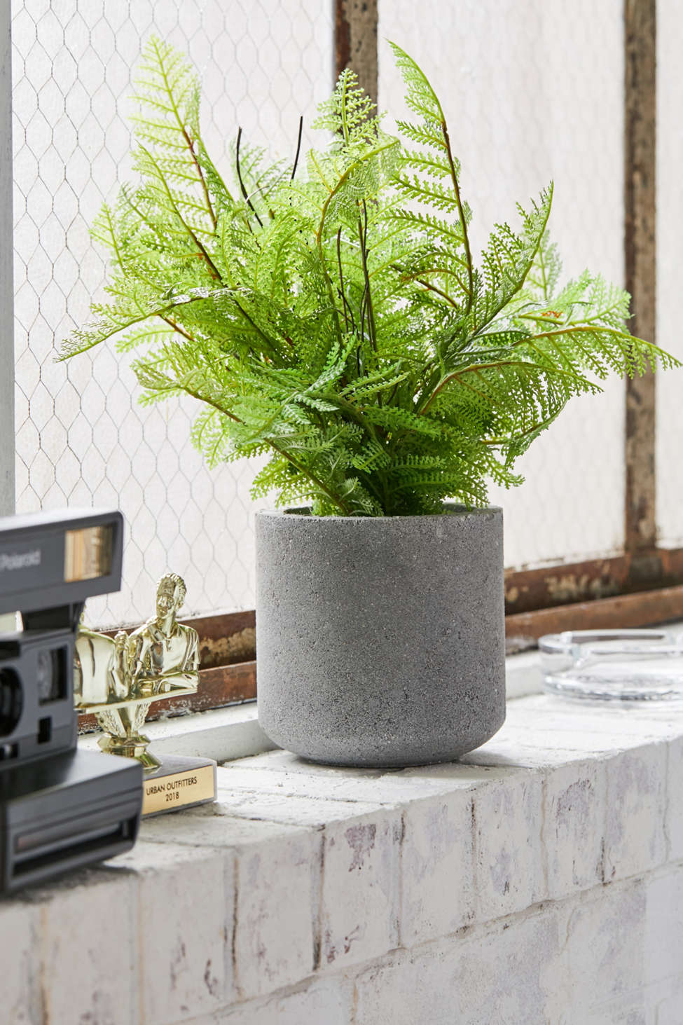 Slide View: 1: Potted Fern Faux Plant