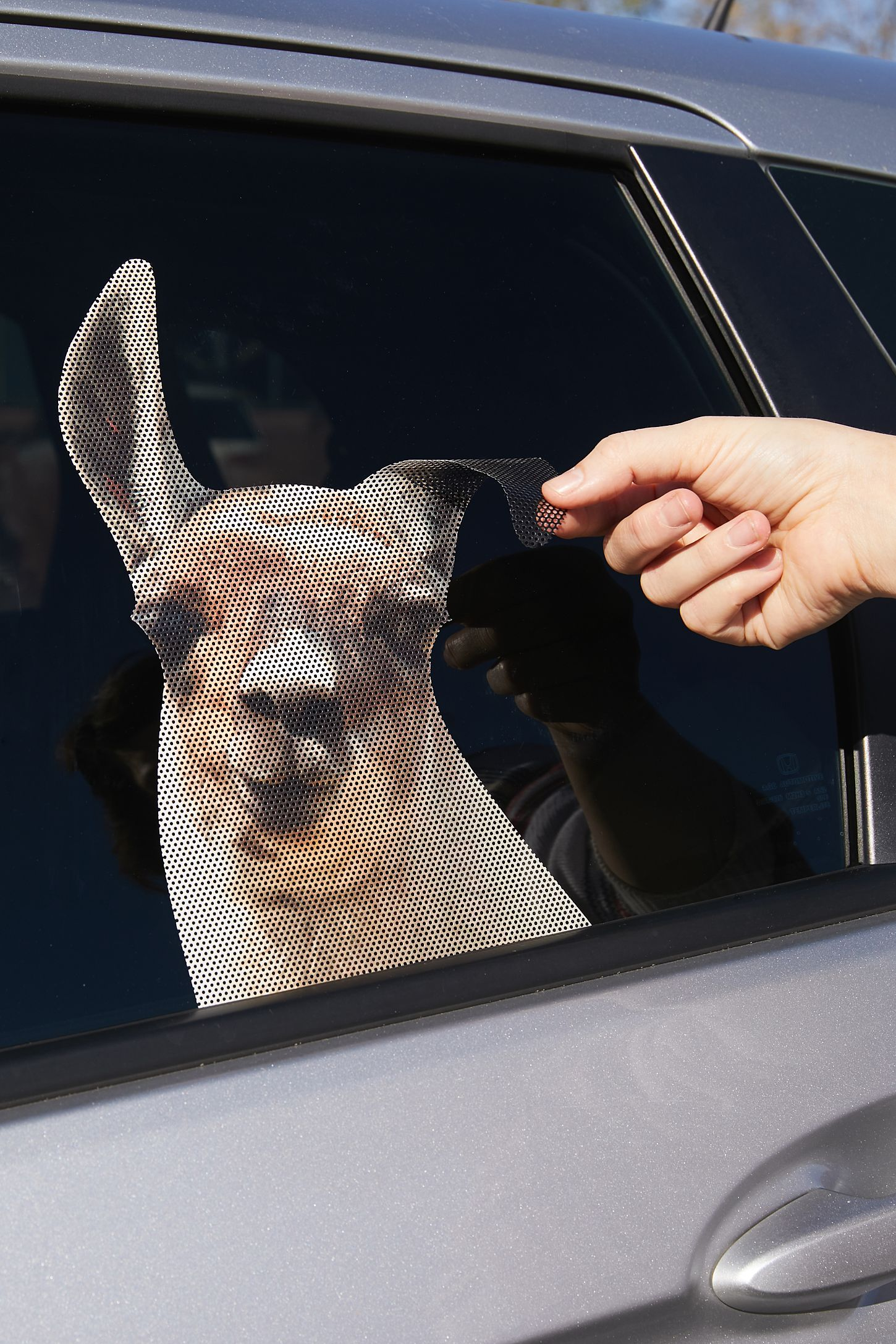 Slide view 2 llama car decal