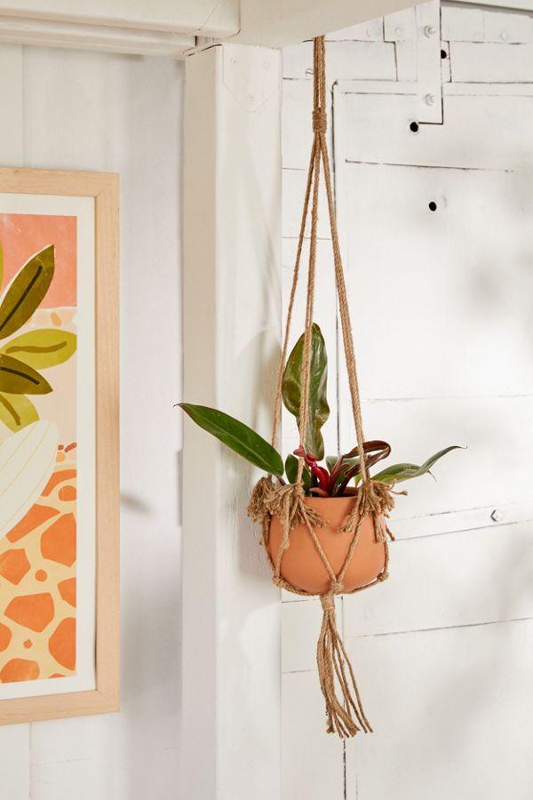 Slide View: 1: Fringed Hanging Planter