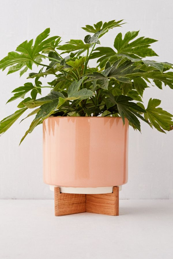Slide View: 2: Cecily 10â?� Planter + Stand