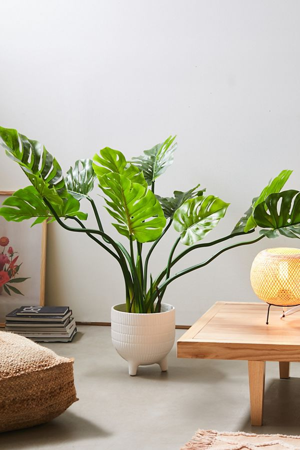 Slide View: 1: Philodendron Faux Plant