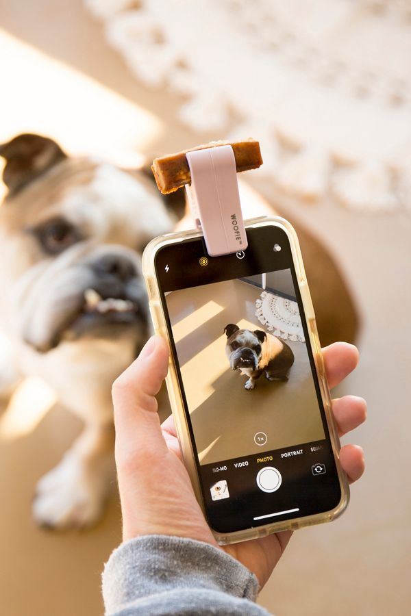 Slide View: 1: Woofie Pet Selfie + Portrait Tool