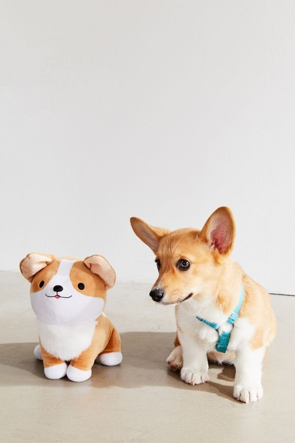 Slide View: 1: Smoko Pet Me Stuffed Corgi Plushie