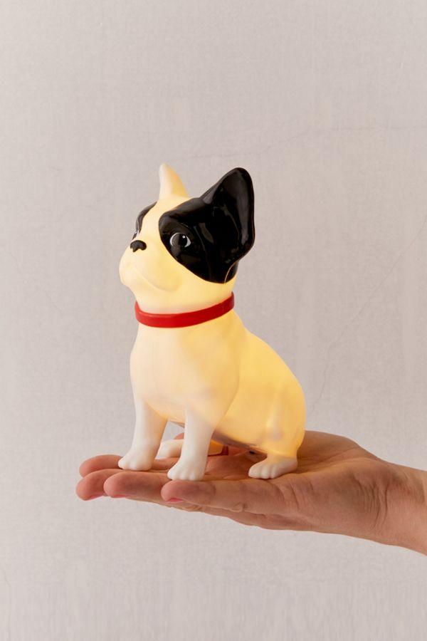 French Bulldog Light by Urban Outfitters