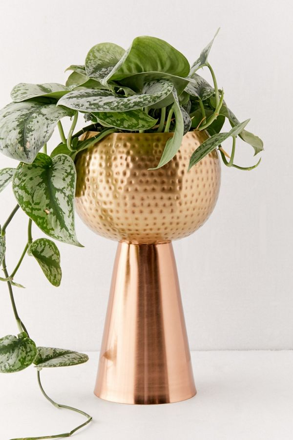 Slide View: 3: Vanessa Tall Metal Planter