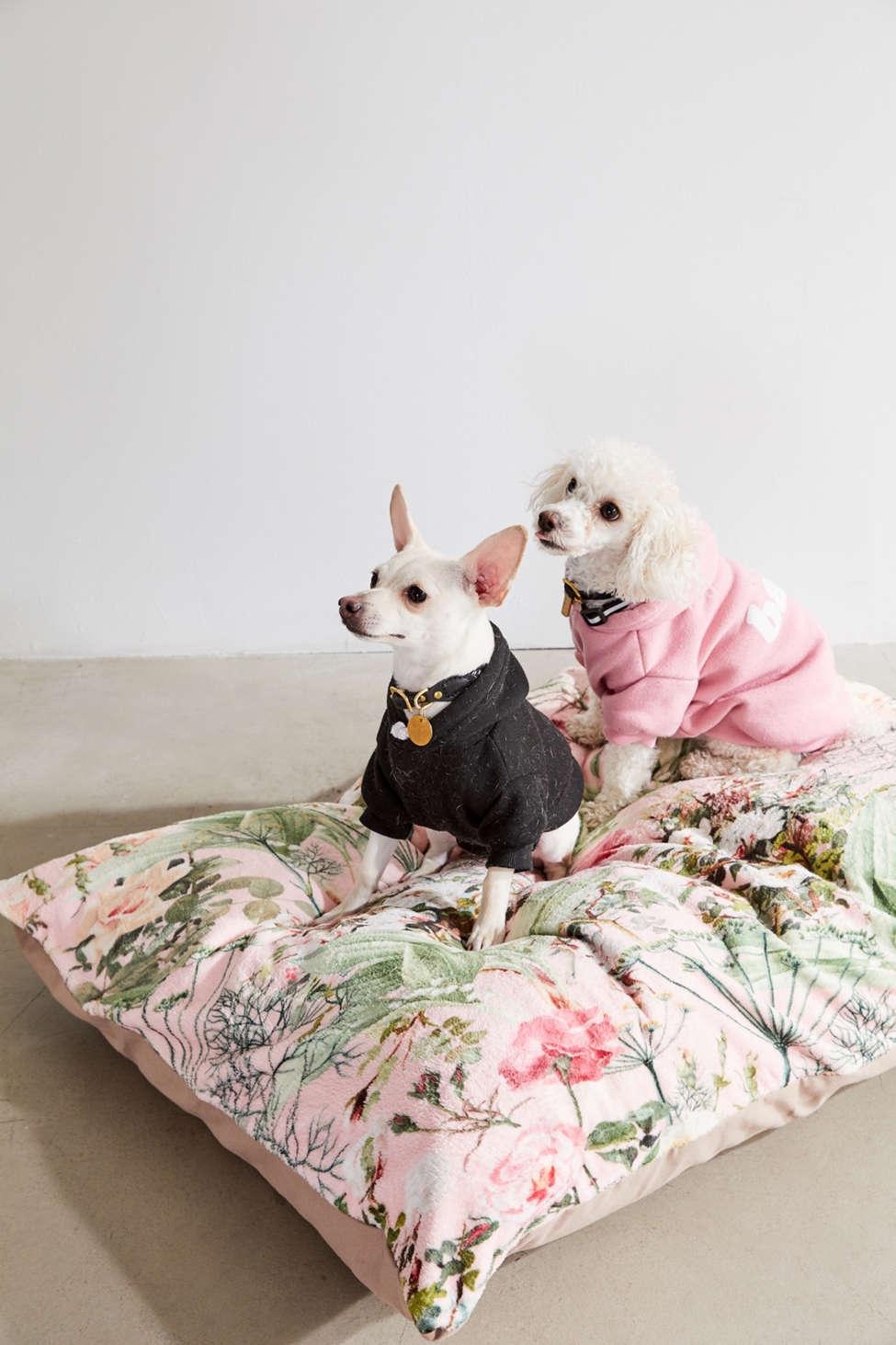 Slide View: 1: 83 Oranges For Deny Botanic Pet Bed