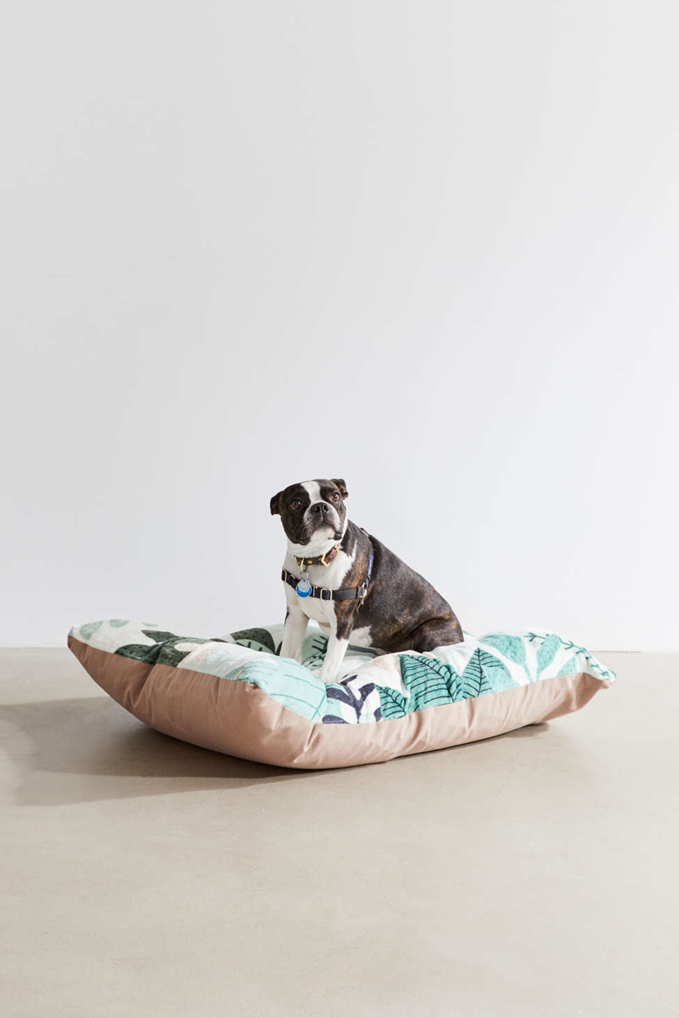 Slide View: 1: Gale Switzer For Deny Into The Jungle II Pet Bed