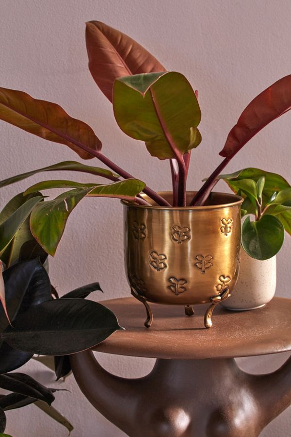 Slide View: 1: Val Footed Metal Planter