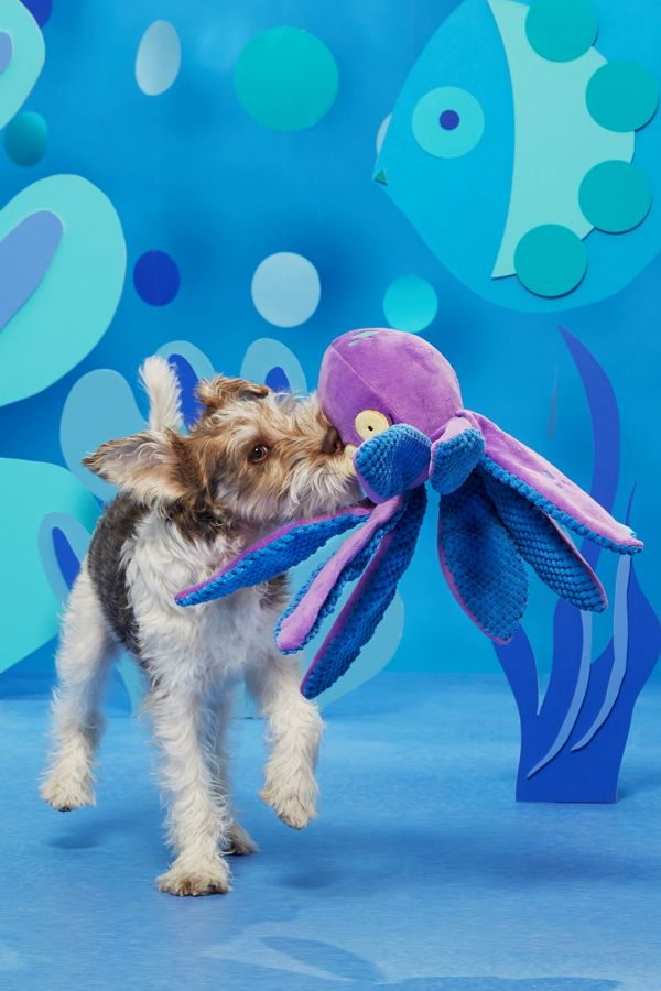 Slide View: 3: BARK Odd Ollie the Octopus Dog Toy
