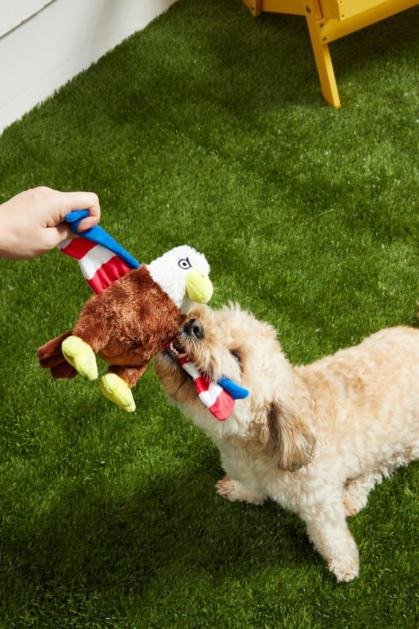 Slide View: 3: BARK Regal the Eagle Dog Toy