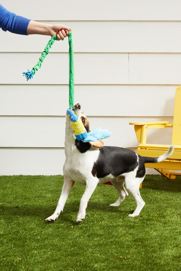 Slide View: 3: BARK Puttin' on the Spritz Dog Toy