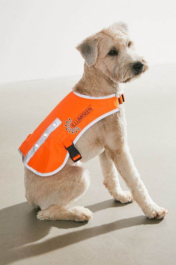 Slide View: 1: Illumiseen LED Dog Vest