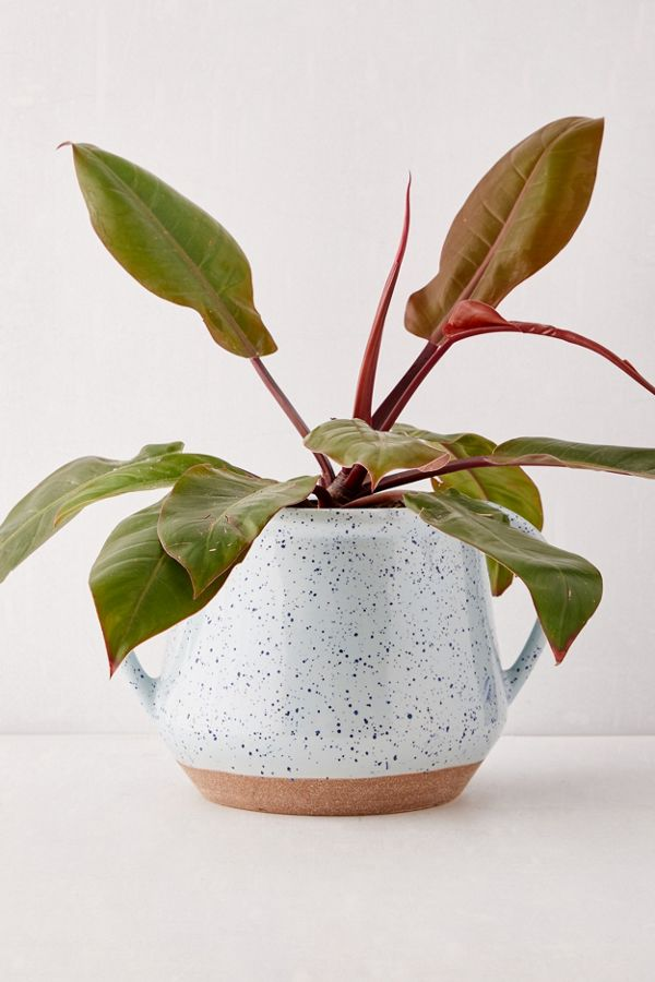 "Slide View: 1: Kiera Speckled Ceramic 8"" Planter"
