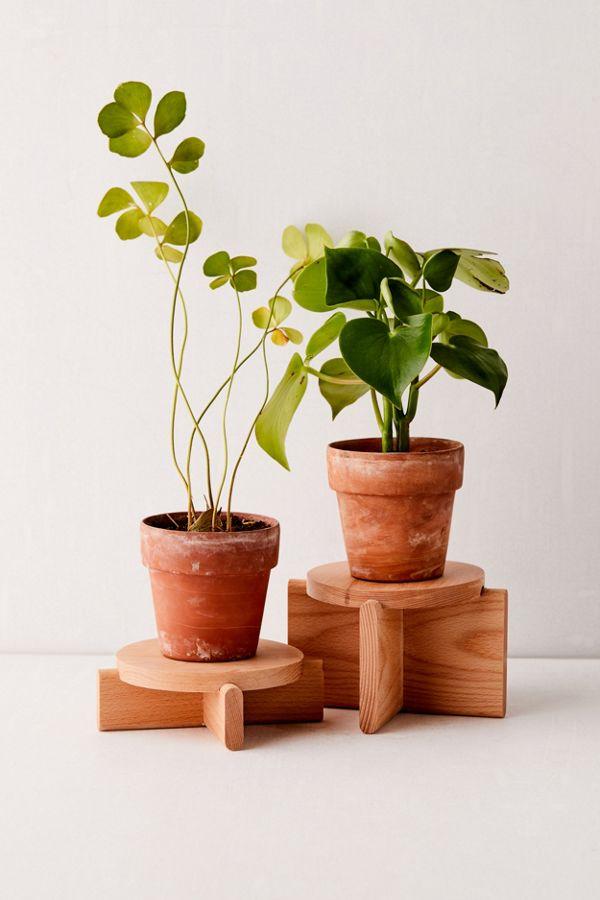 Slide View: 1: Areaware Plant Pedestal - Set Of 2