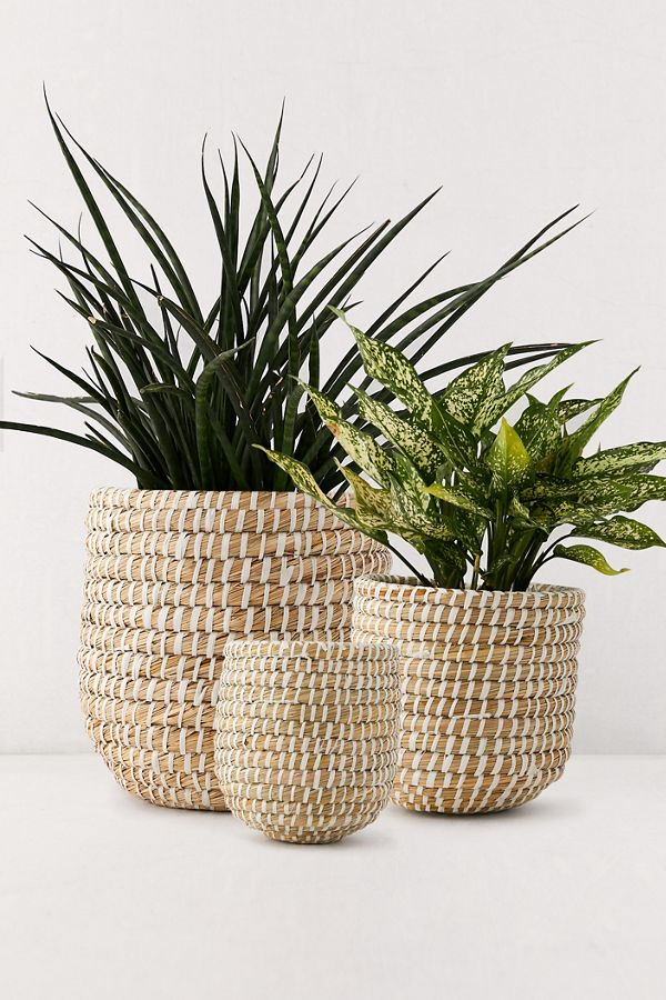 Slide View: 1: Dia Natural Basket Planter