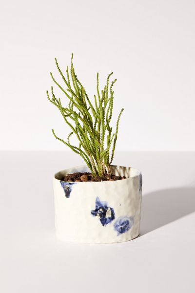 Molly Bernstein Handmade Abstract Planter