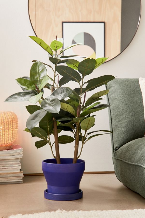 Slide View: 1: Potted Rubber Tree Faux Plant