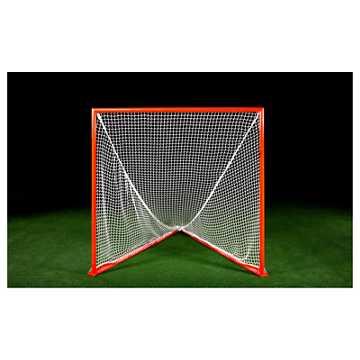 Professional Goal