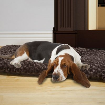 PETMAKER X Large Cushion Pillow Pet Bed