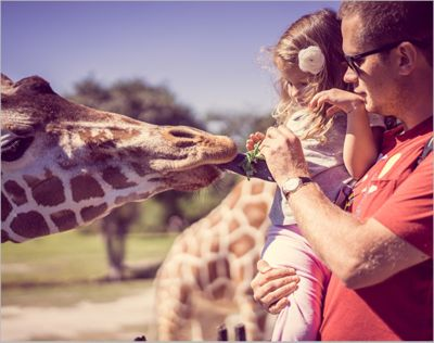 A trip to the zoo. Make it a day to remember. Up to 50% OFF*