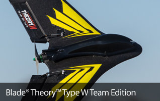Blade Theory Type W Team Edition FPV Flying Wing RC Airplane