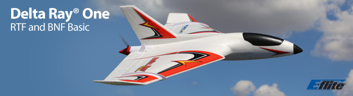 E-flite Delta Ray One Beginner Flying Wing RC Airplane with SAFE Technology