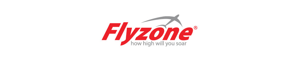 Flyzone Logo