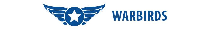 Shop RC Warbird Airplanes E-flite Hangar 9 FMS