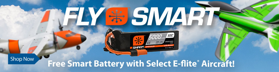Free battery with purchase of select E-flite aircrafts until 12/31