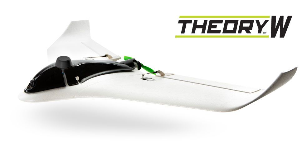 Blade Theory W Wing