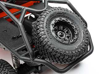 Rear Truggy Roll Cage with Functional Spare Tire