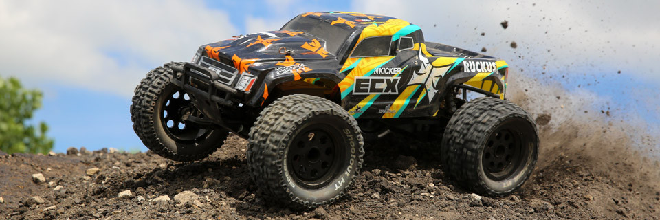 1/10 Ruckus 2WD Monster Truck RTR