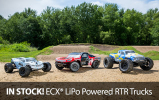 ECX LiPo Torment Ruckus Circuit RTR Ready To Run 2WD