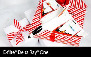Delta Ray One RTF & BNF Basic with SAFE Technology