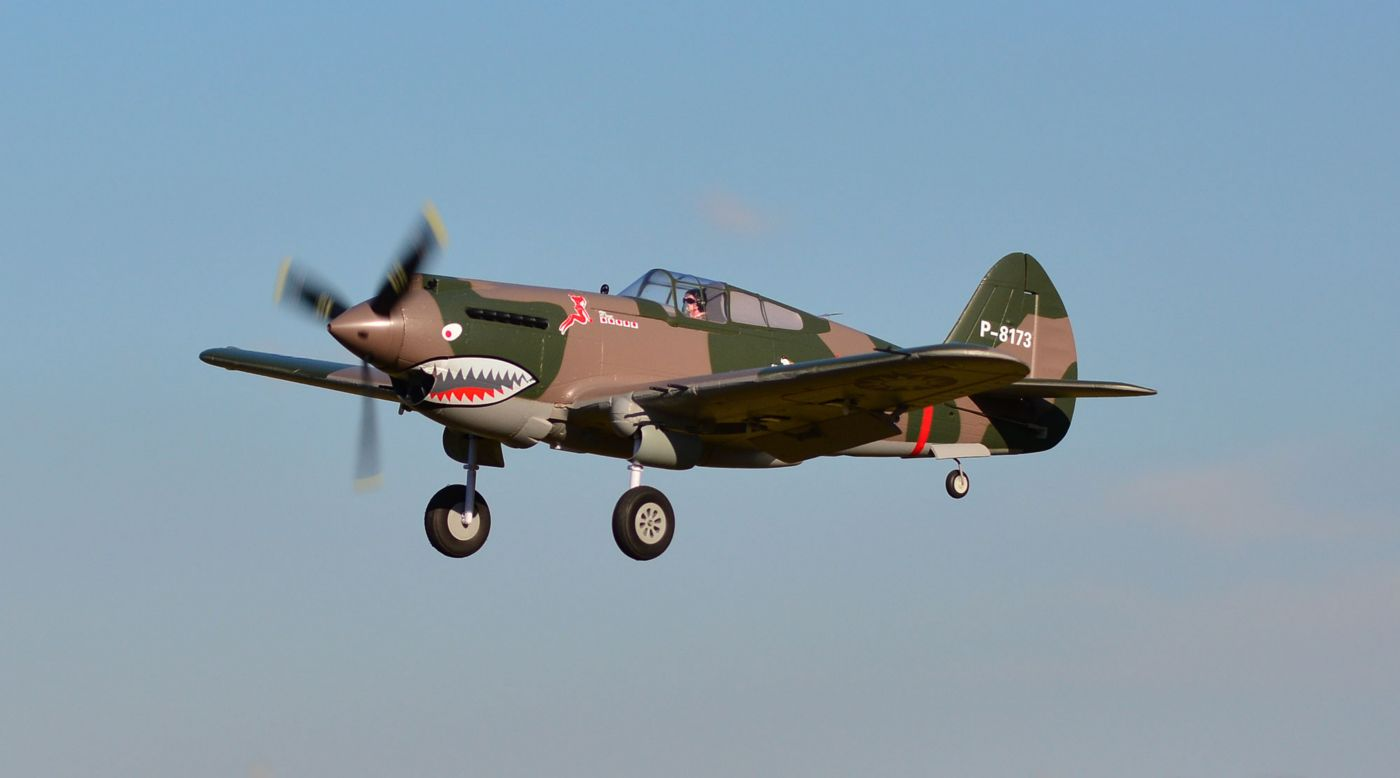 Image for P-40B Flying Tiger PNP, 980mm from HorizonHobby