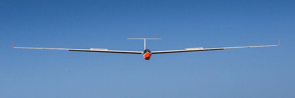 Hanger 9 Elite Series ASH 31 6.4m ARF