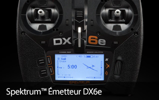 Spektrum Emetteur DX6e