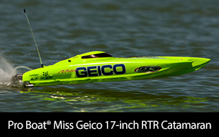 Pro Boat Miss Geico 17 inch catamaran