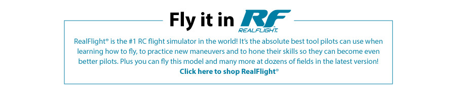 Fly it in RealFlight