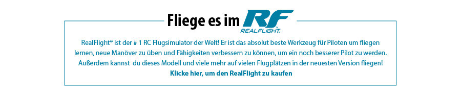 Fliege es im RealFlight