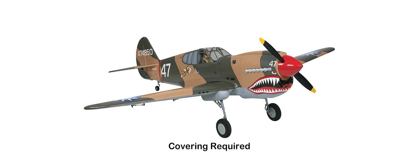 Image for Giant P-40 Warhawk RTC 50-60cc, 86