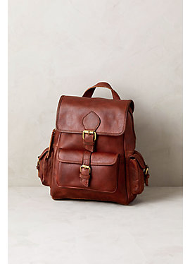 Salem Leather Backpack Purse