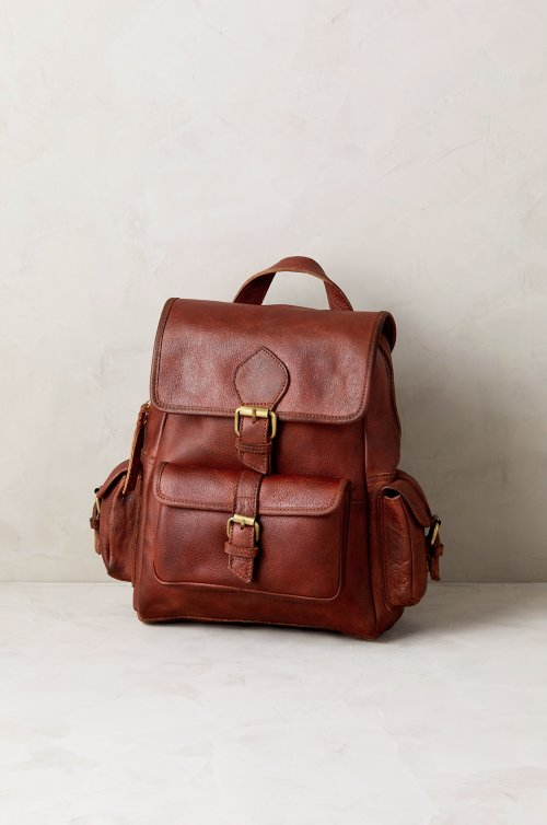 d78dfb993786 leather backpack purse - Overland