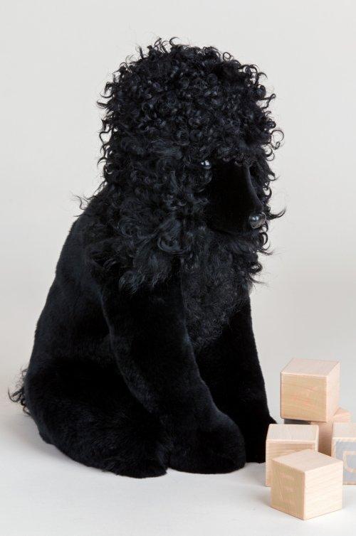 Noir Rex Rabbit Fur Poodle