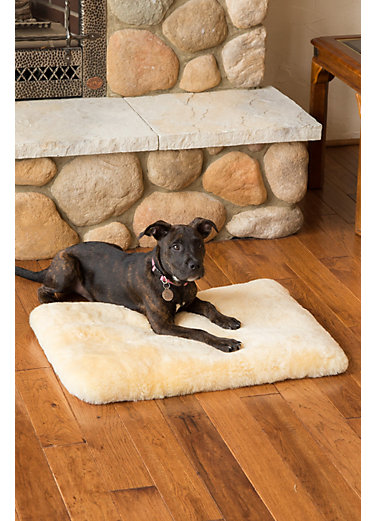 "Overland 28"" x 20"" Small Australian Sheepskin Pet Bed"