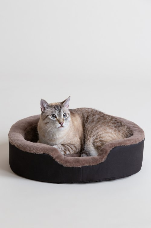 "Overland 14"" x 20"" Small Sheepskin Pet Bed"
