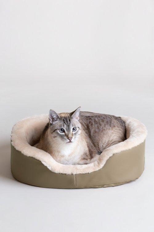 "Overland 14.5"" x 19.5"" Small Sheepskin Pet Bed"